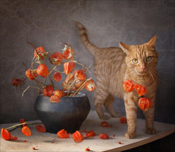 Рыжая кошка на картине