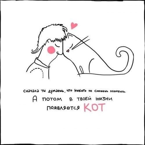 Все меняется когда в твоей жизни есть кот