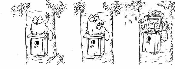 Кот Саймона охотится на птичку