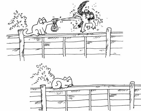 Кот Саймона обливает кота из пульверизатора