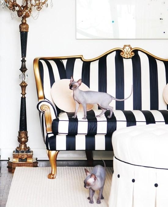 Коты в интерьере