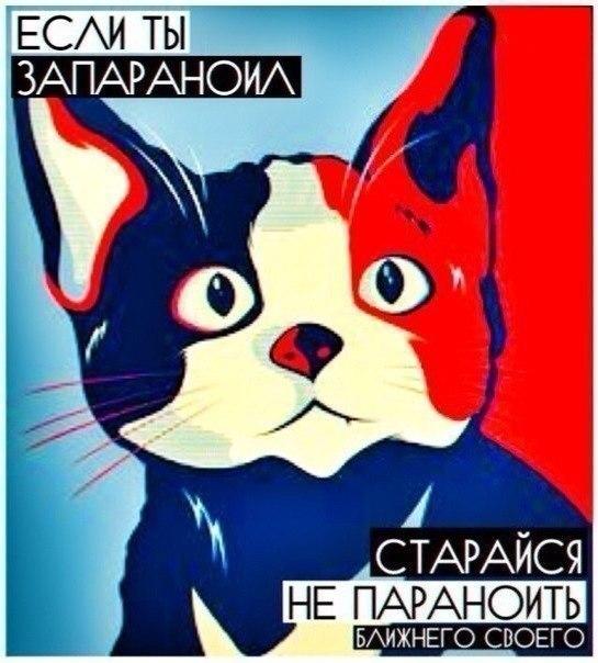 Арт с котом
