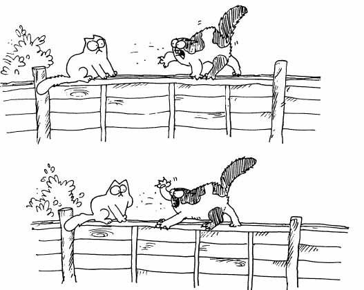 Кот Саймона и другой задиристый кот