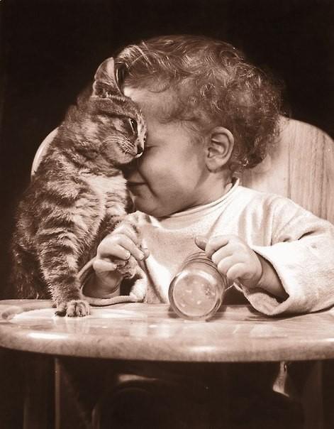 Искренняя любовь ребенка и кота.