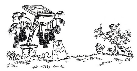 Кот Саймона и птицы