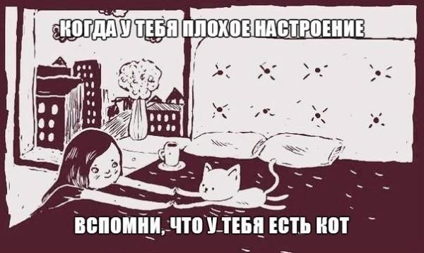 И то верно!