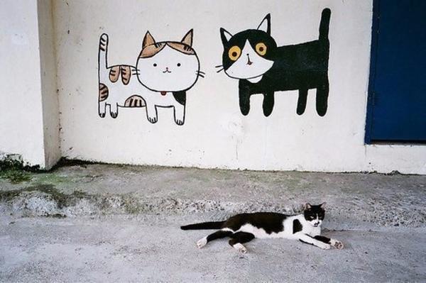 Граффити кошки