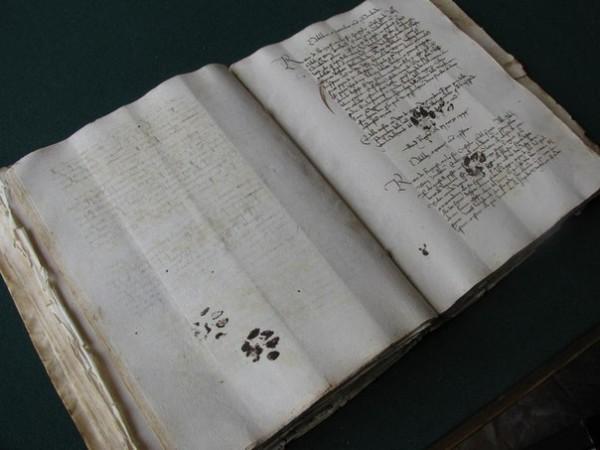 Отпечаток лапы кота. Ретро-фото