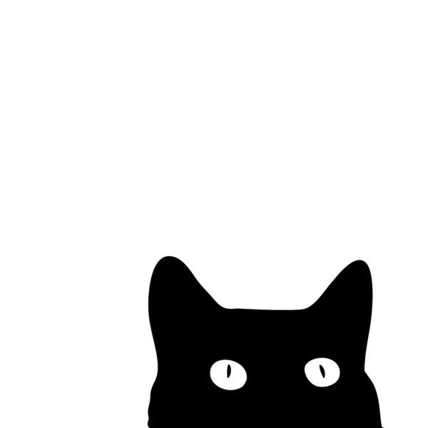 Черная кошка арт