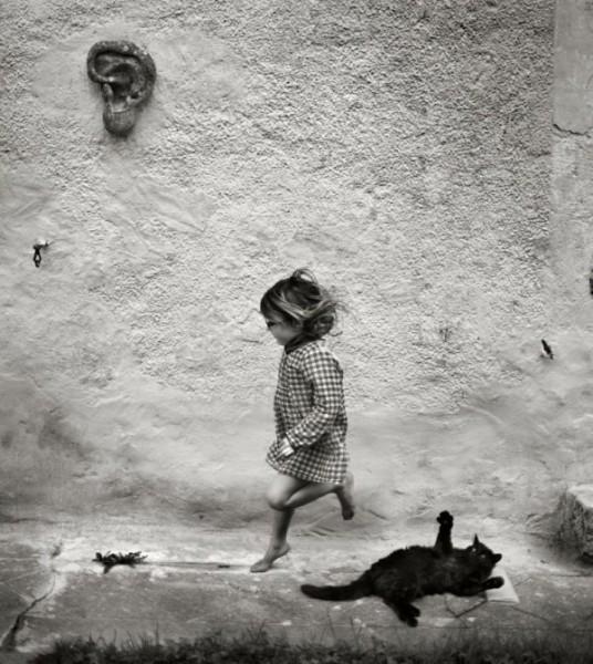 Черная кошка и девочка