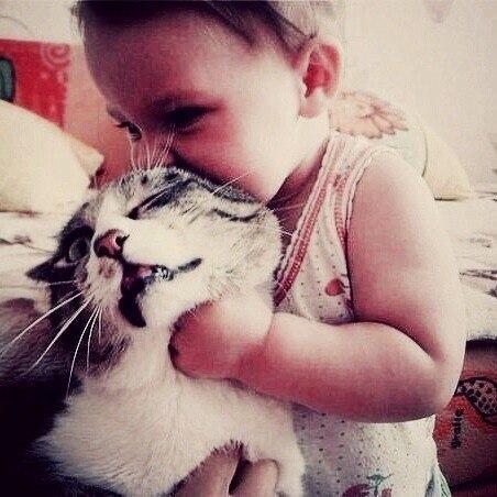 Зацелую тебя до смерти, кот!