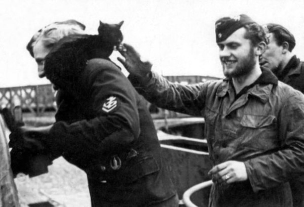 Кот–подводник Петер,талисман U–953.