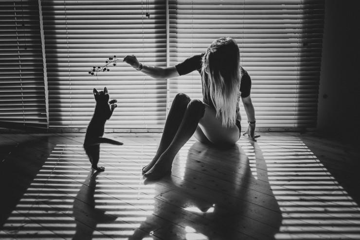 Девушки играет с кошкой