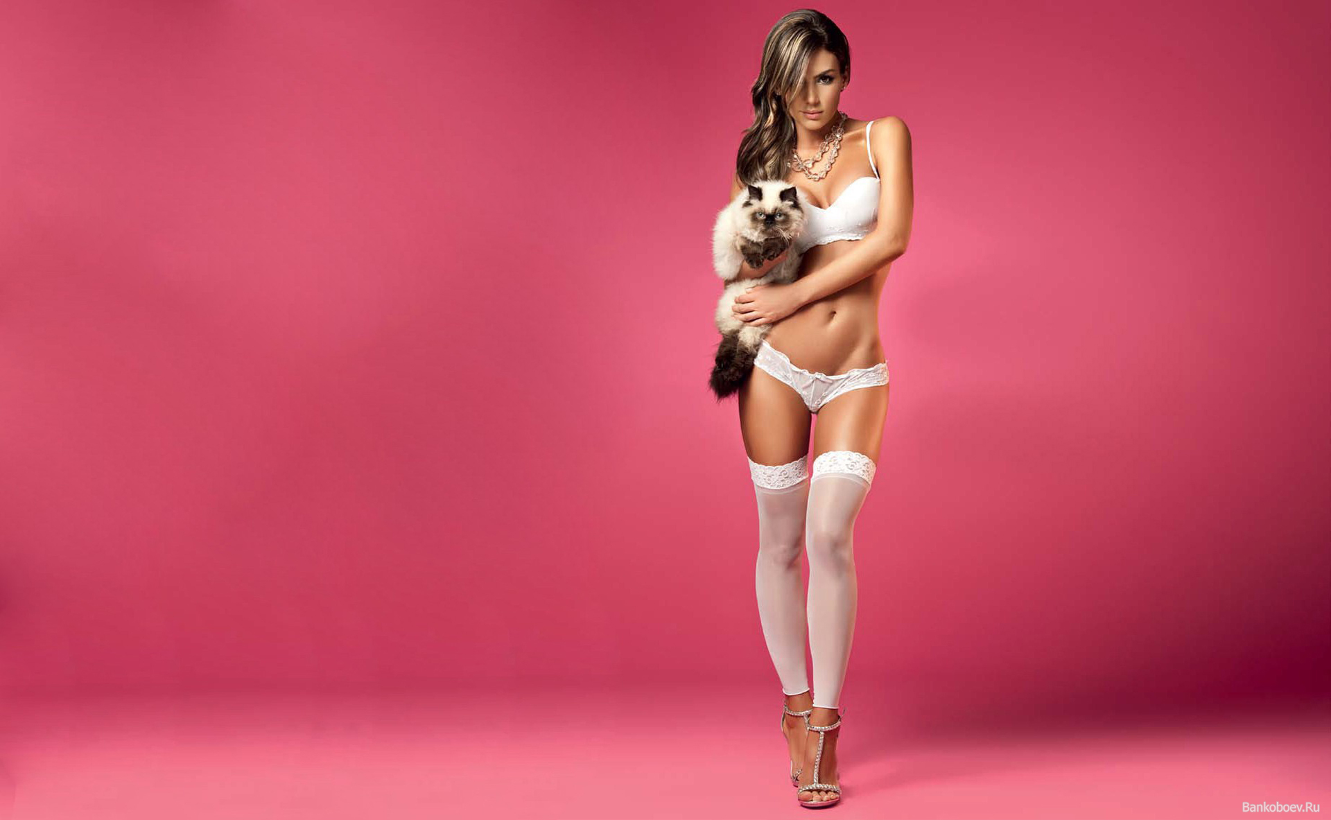 Фото блондинок с кошками