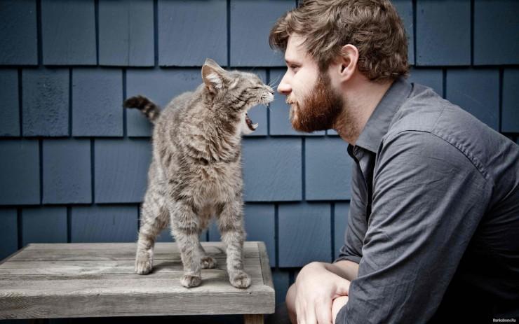 Бородатый мужчина и кот на столе