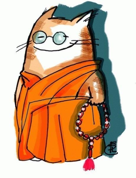 Кот буддист
