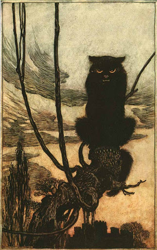 artur rackham - cat illustration from Grimms Fairy tales