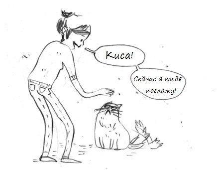 Девушка гладит кота — комикс