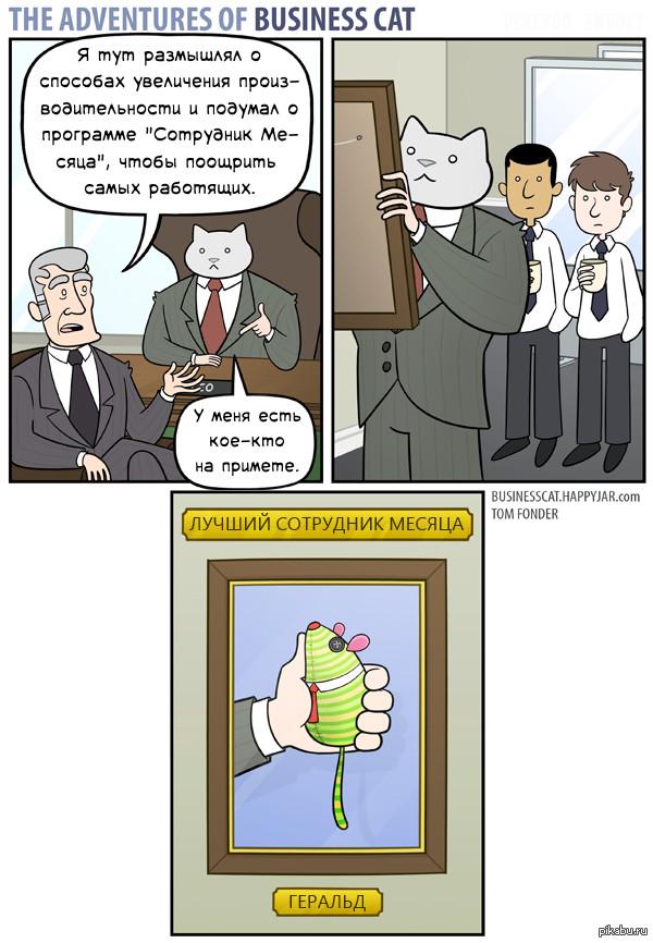 Бизнес-кот комикс про сотрудника месяца