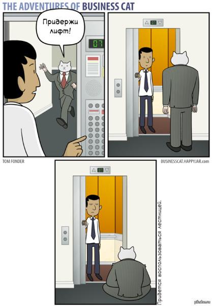 Комикс Бизнес-кот «Лифт»