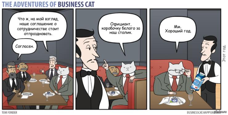 Бизнес-кот и коробочка белого
