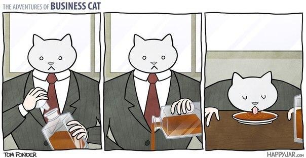 Бизнес-кот на выходных