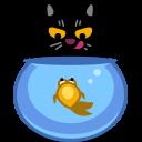 cat(12)