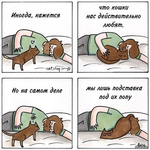 комикс про засранца кота