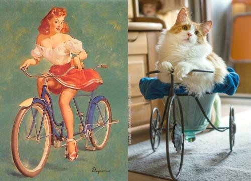 Девушки и кошки в стиле пин ап