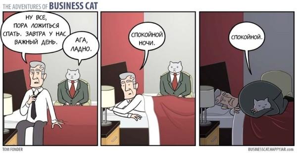 Мем про бизнес-кота