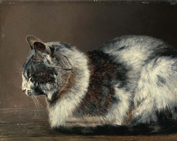 Иван Павлович Похитонов (1850-1923) — Кот