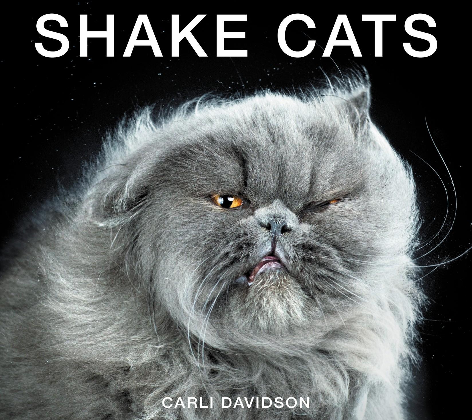 Отряхивающиеся кошки
